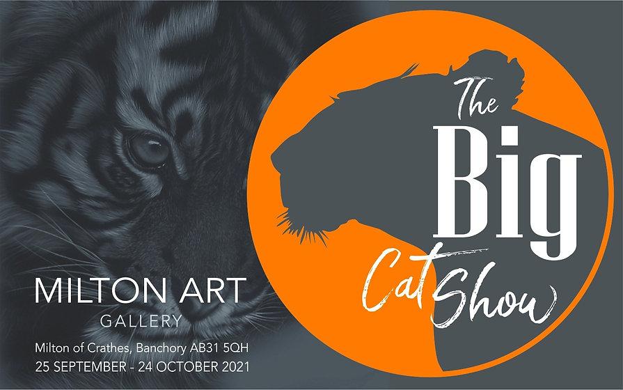 Art Show Details Solo Wildlife Animals Artist