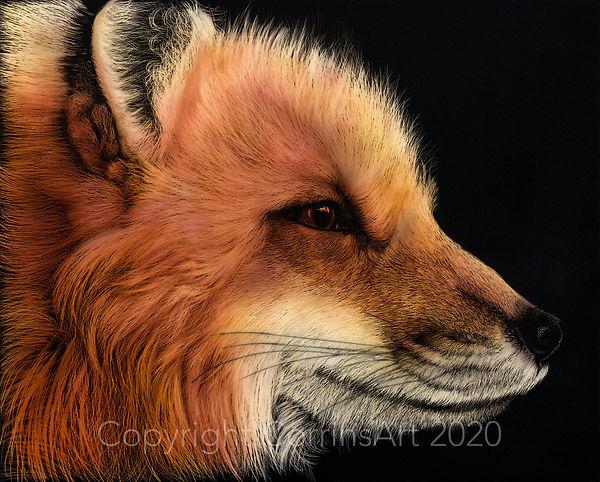 Fiery Fox LR.jpg