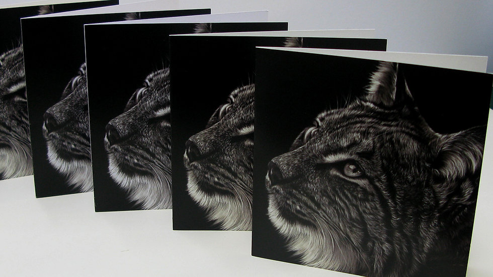 Greetings Card - Lynx Study