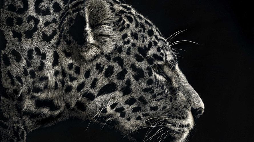 El Cazador - by Scottish Wildlife Artist Gordon Corrins