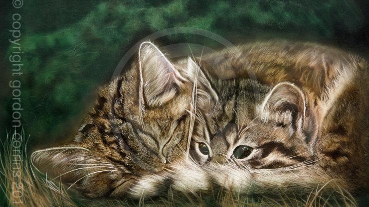 Look out world - Wildcats Giclée Print