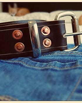 Cedar Standard Jeans Belt.jpg