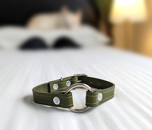 """Lil' Olivo Ring Collar 3/4"""" (19mm) Wide"""