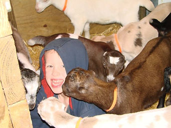 Garett with the baby goats '08