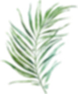 MajesticGreen-floralelements-030.png