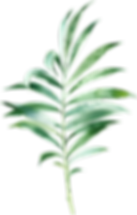 MajesticGreen-floralelements-023.png