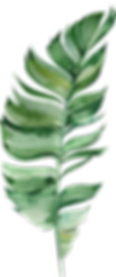 MajesticGreen-floralelements-03.png