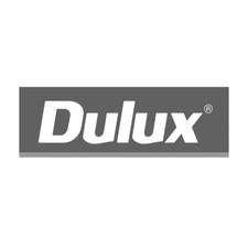 Dulux Sq.jpg