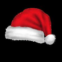 Inspirations Paint CQ Christmas Trading