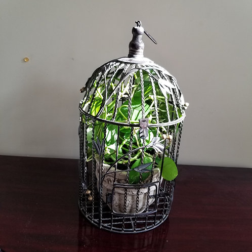 Lot 81 Birdcage with plant
