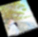 沖縄 石垣島 神戸 フォトウエディング ウェディングフォト ビーチフォト 結婚写真の前撮り バウリニューアルのアルバム