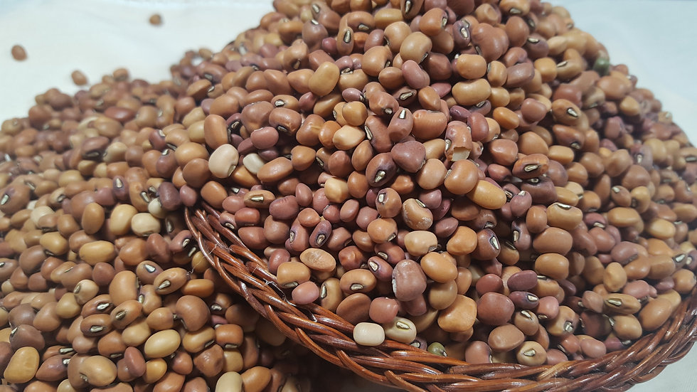 Red and Brown Cowpeas