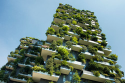 urban-insight-climate-action.jpeg