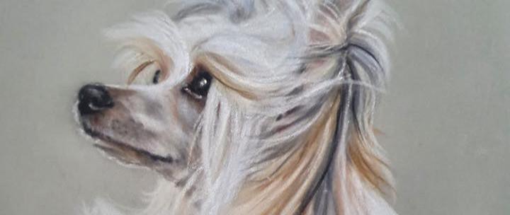 Gemma weighill artist