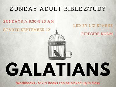 Galatians Bible Study 1024x768-3.png