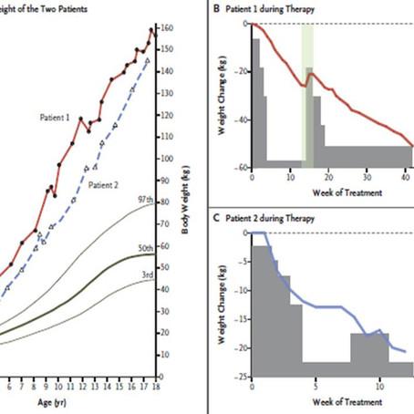 A prova de que obesidade é uma doença (mais uma)