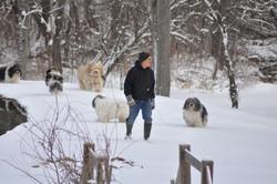 Ponjude gang for winter stroll
