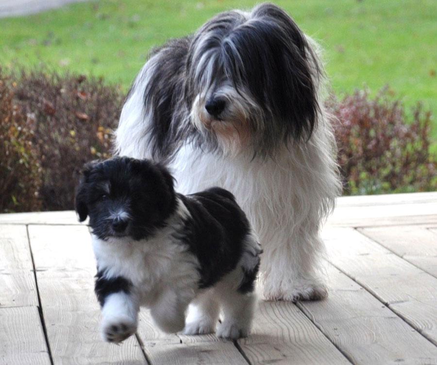 Momma Zosia with son, Stosh