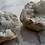 Thumbnail: 8cm White Quartz Geode