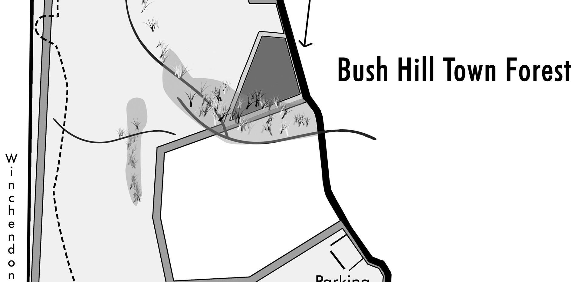 BushHilltrail.1.jpg