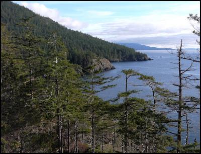 the_rugged_coastline_at_davis_bay.jpg