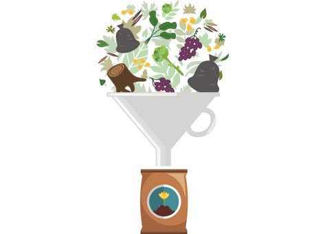 «Bio-fertilizers» или «Как отходы становятся удобрениями и помогают в ремедиации почв»