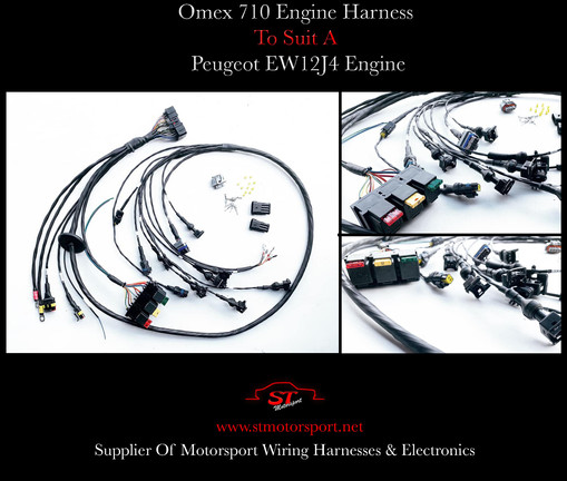 Omex 710 Engine Harness To Suit A EW12J4 Engine