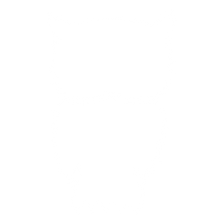 1 OWL.png