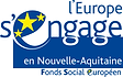 FSE NA l'europe s'engage déroulé.png