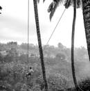 Mission Locale Eysines