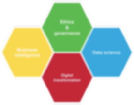 BI Expertise - Our domains of expertise