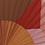 Thumbnail: Eventail Paradis orange