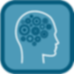 Enviromentum-Our_work-Behavioural_Change