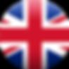 British Gas Masks