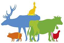 referendim pour les animaux.png