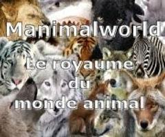 Manimalworld