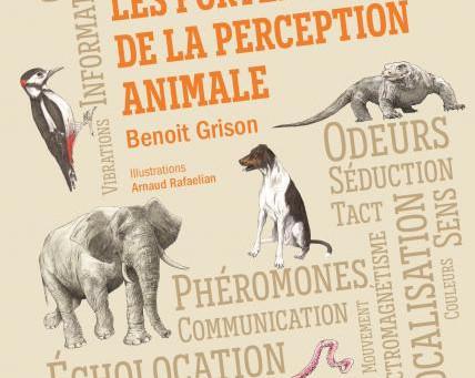Les chroniques de Mélissa : Les portes de la perception animale, Benoit Grison