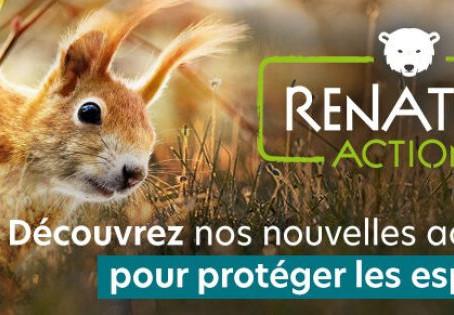 Renatur'Action : AVES France lance sa campagne de crowdfunding pour rendre à la nature des parcelle