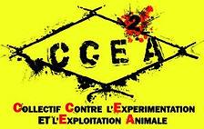 CCE2A