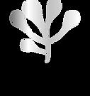 Anumati_logo_transparent.png