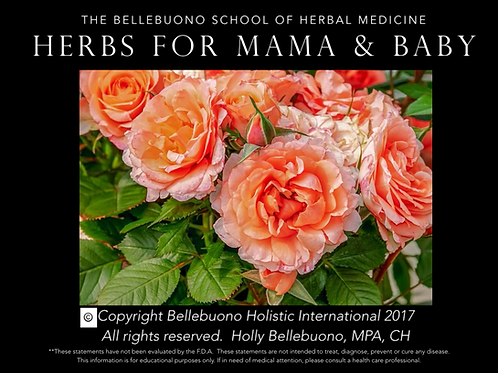 Best Herbs for Mama & Baby Webinar