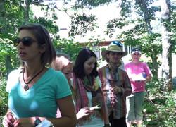 Exploring plants on herbal ID walk