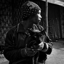 Catman - Jack McLain