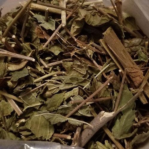 Calea Zacatechichi - Lucid Dream Herb - Natural Herbal Incense Smoke (5 grams)