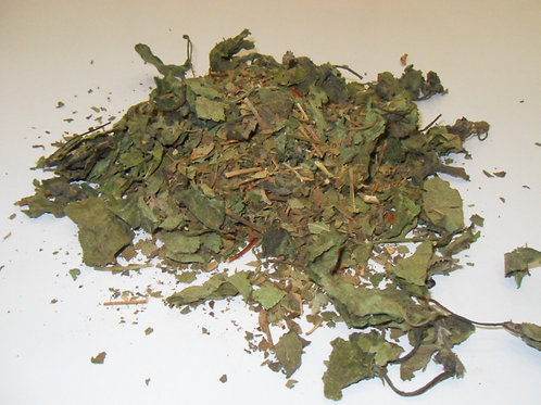 Calea Zacatechichi Mexican Lucid Dream Herb Wild harvested Mexico 5 grams