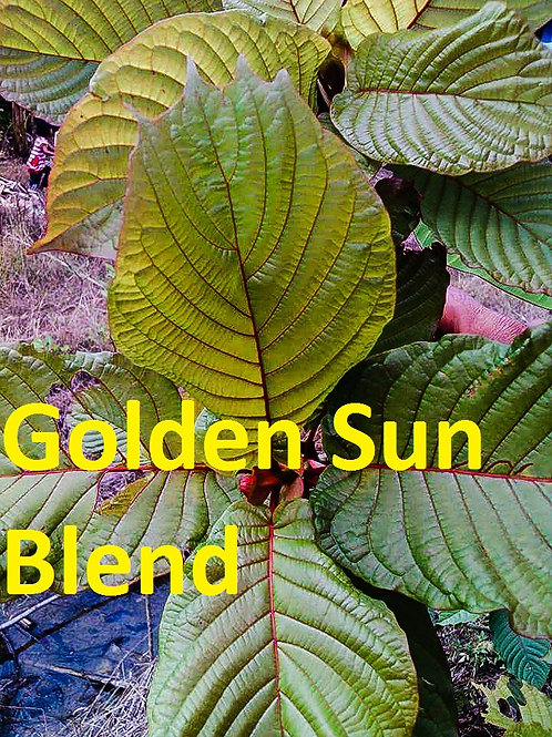 Golden Sun Blend 1 oz (28 grams ) Kratom Powder Gold/Yellow/Red