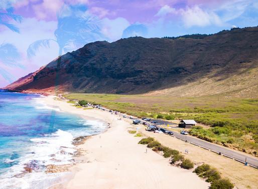Summer in Hawaii 2019: Week 15 Recap (Big news!)