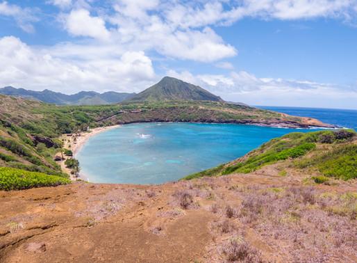 Summer in Hawaii 2019: Week 8 Recap