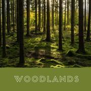 Woodland Typology of vegetation