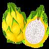 yellow pitaya.png